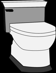 toilette ist verstopft ursachen und l sung einer toilettenverstopfung. Black Bedroom Furniture Sets. Home Design Ideas